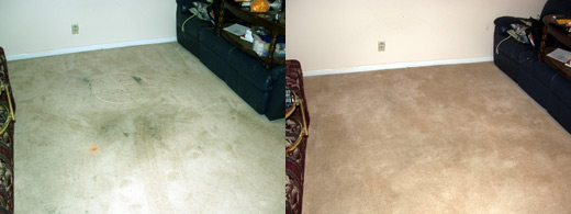 Carpet Cleaned Before and After