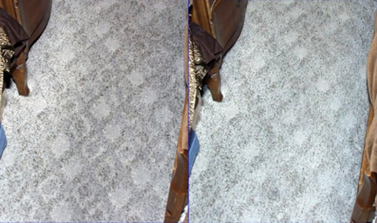 Carpet Cleaning Tips - Tips on Cleaning Your Carpets from Rug Doctor