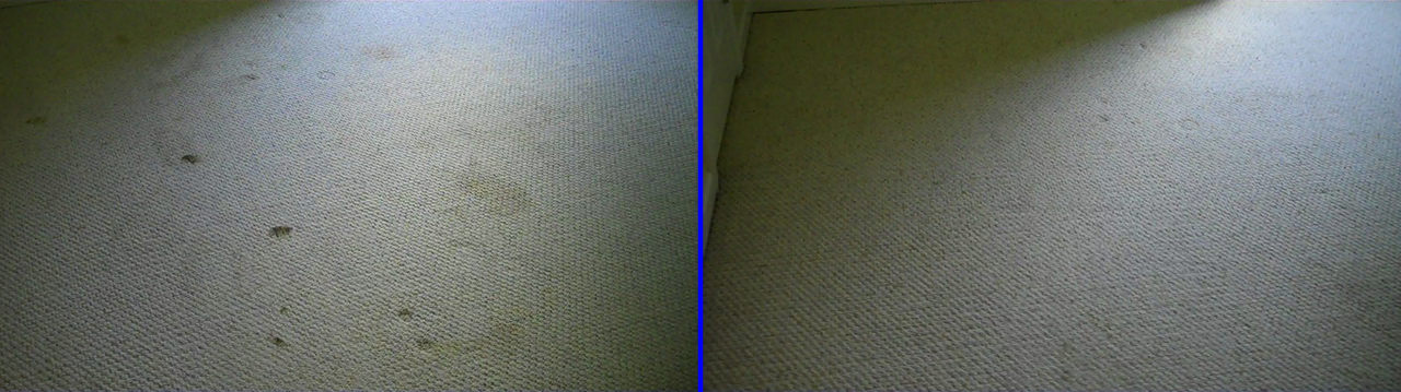 Hampton Cove Berber Carpet Cleaning
