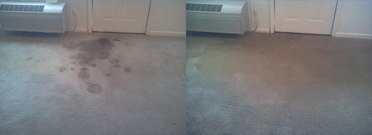 Apartment Carpet Cleaned in North Huntsville