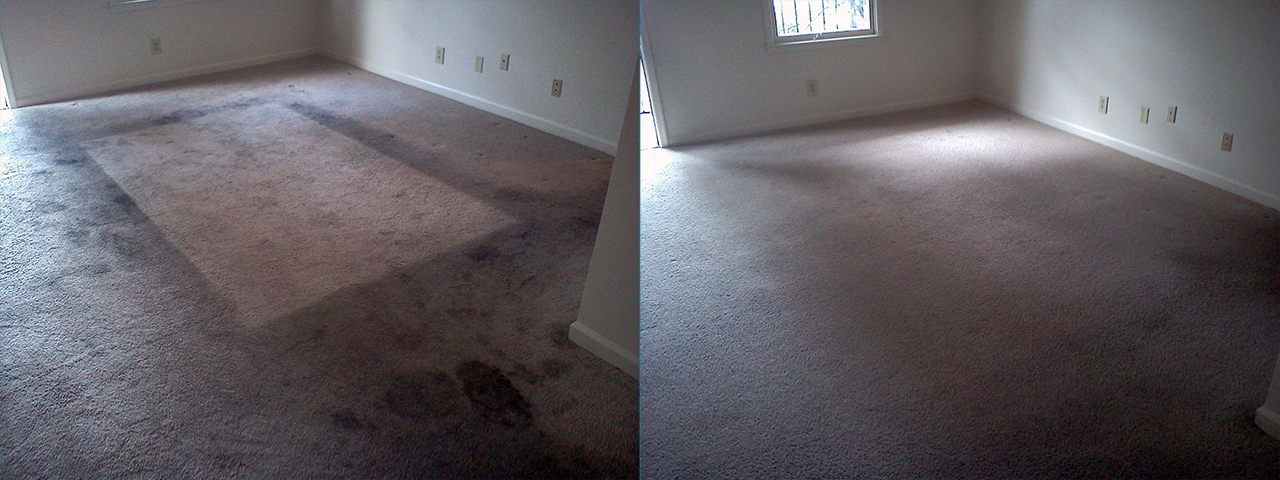 Apartment Carpet Cleaned North Huntsville